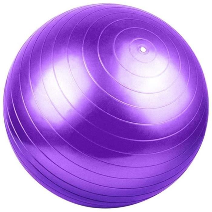 GYM BALL S Ballon De Gym 55Cm Ballon De Gym Ballon De Gymnastique Gym Ball Yoga Ball Soulager Les Courbatures Mateacuteriau PVC 233