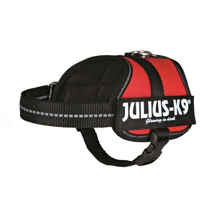 Harnais Power Julius-K9 - Baby 2 - XS-S : 33-45 cm-18 mm - Rouge - Pour chien