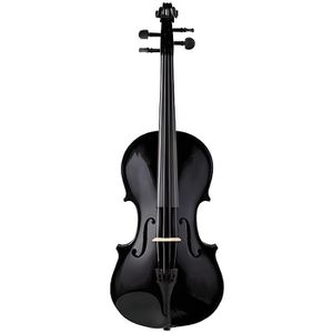 VIOLON STAGG Violon 4/4 Erable & Soft-Case Standard