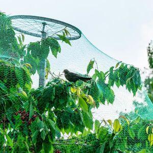 plante de jardin, Filet répulsif pour les oiseaux anti-filet vert pour oiseaux