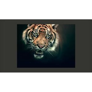 Poster mural geant300cm achat vente poster mural geant300cm pas cher cdiscount for Poster mural pas cher