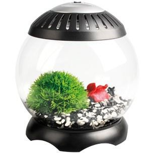 aquarium nano sphere 5 litres flamingo achat vente aquarium aquarium nano sphere 5 litr. Black Bedroom Furniture Sets. Home Design Ideas