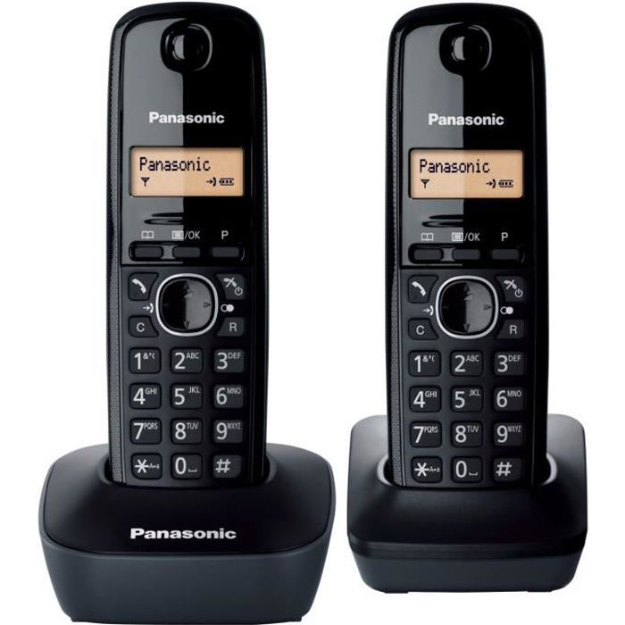 panasonic kx tg1612frh 2 combin noir achat t l phone. Black Bedroom Furniture Sets. Home Design Ideas