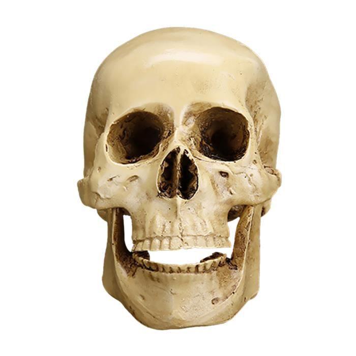 PIECE DETACHEE LUMINAIRE Crâne Résine 1x Modèle