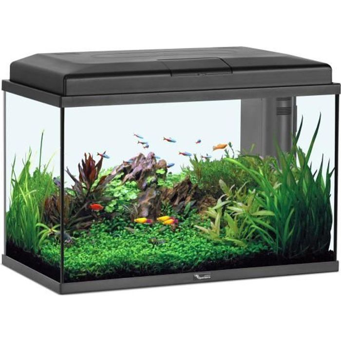 Aquarium complet pas cher for Site aquarium pas cher