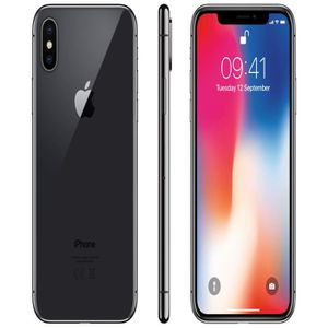 SMARTPHONE Apple iphone X 64Go Gris Sidéral AAA Condition