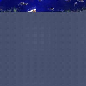 POMPE À EAU ss-33-Mini pompe à eau submersible 14W pour aquari