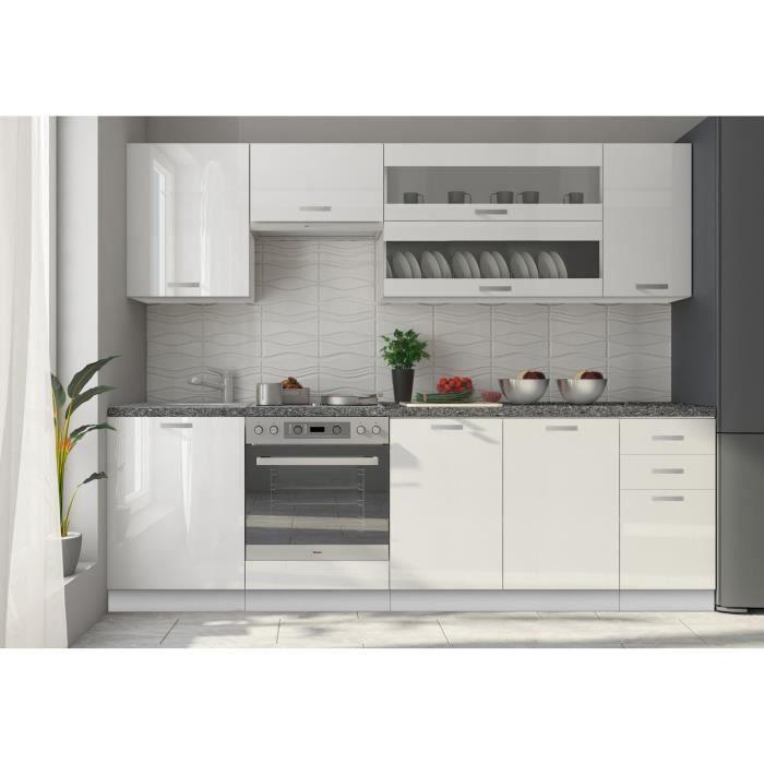 Meuble De Cuisine Design 100 Cm Avec 2 Portes Coloris Blanc Mat Et