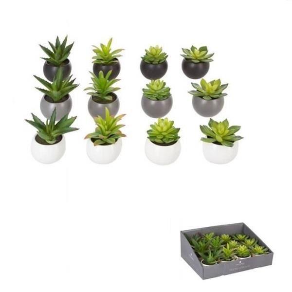 Plante Grasse Artificielle En Pot Modele Aleatoire Decoration