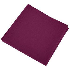 SERVIETTE DE TABLE VENT DU SUD Lot de 12 serviettes de table YUCO - V