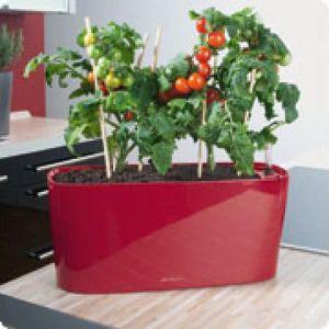 JARDINIÈRE - BAC A FLEUR Mini-jardinière Delta 20 rouge scarlet