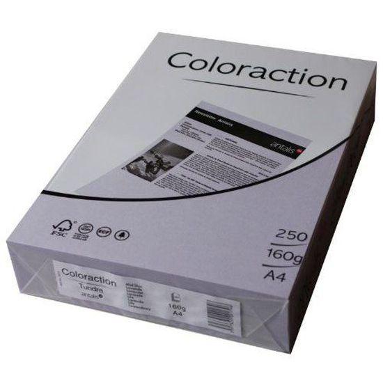 Import Allemagne Coloraction 838A 160S 20 Antalis Papier couleur A4 160 g//m/² Lavande//20
