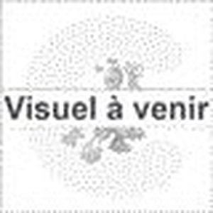 CUISINIÈRE - PIANO FALCON - PROP90FXPDFCR