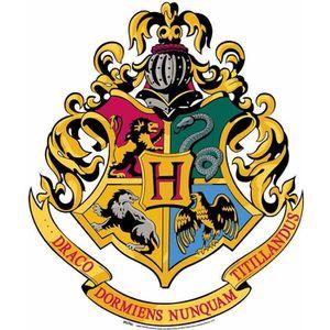 Harry Potter Une Annee A Poudlard Achat Vente Pas Cher
