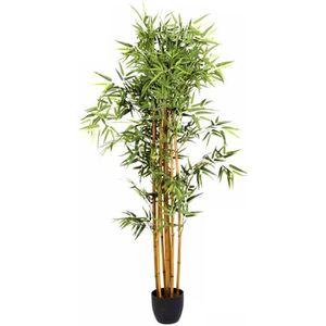 Deux 6/' Yucca x5 artificielle tropical Arbre soie Plante sans pot,