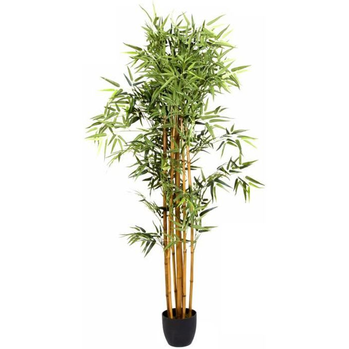 Plante artificielle bambou pot hauteur 180 cm achat for Plante en pot
