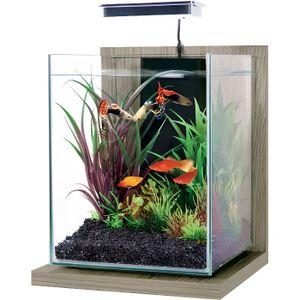 AQUARIUM Kit Aquarium Jalaya Zebrano Gris