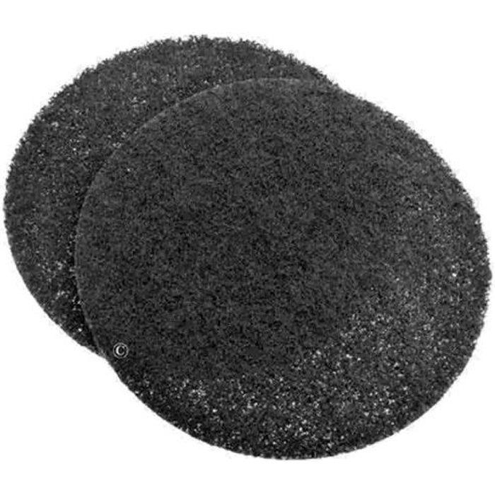 Lot de 2 filtres charbon pour Hotte BLOMBERG, BRANDT, SAUTER, THERMOR