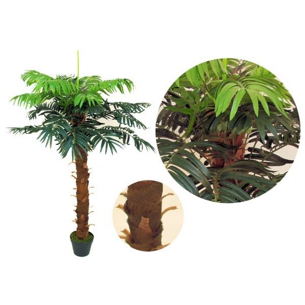 Plante exotique artificielle discount - Plantes artificielles discount ...
