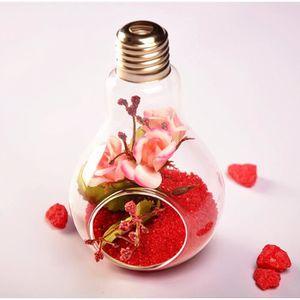 VASE - SOLIFLORE Décolleuse en suspension en verre Vase en fleurs C