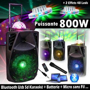PACK SONO Karaoké ENCEINTE SONO 800W Mobile avec Lecteur USB
