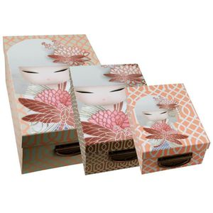 BOITE DE RANGEMENT 3 boites de rangement en carton Kimmidoll