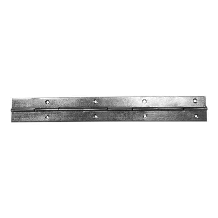 CHARNIÈRE - PAUMELLE Charnière 10x 240mm métal piano acier