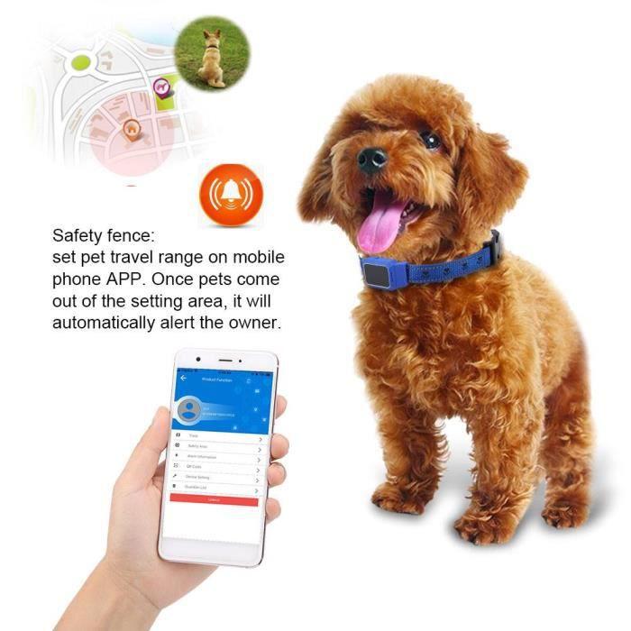 Mini Animal de Compagnie GPS Imperméable Traqueur de Chien Suivi de Collier en Temps Réel Repère de Sécurité Finder (Bleu)