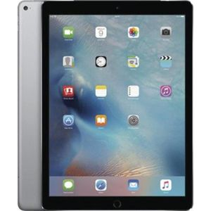 TABLETTE TACTILE Apple iPad Pro Wi-Fi + Cellular 128 GB - space gre