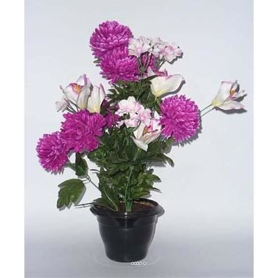 Composition pot chrysantheme orchidee lestee pour for Orchidee exterieur
