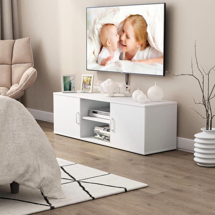 MEUBLE TV LANGRIA Meuble TV (120x40x40cm) contemporain avec