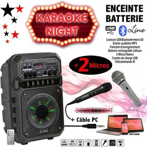 PACK SONO Karaoké ENCEINTE SONO + USB MP3 BLUETOOTH FM + 2 M