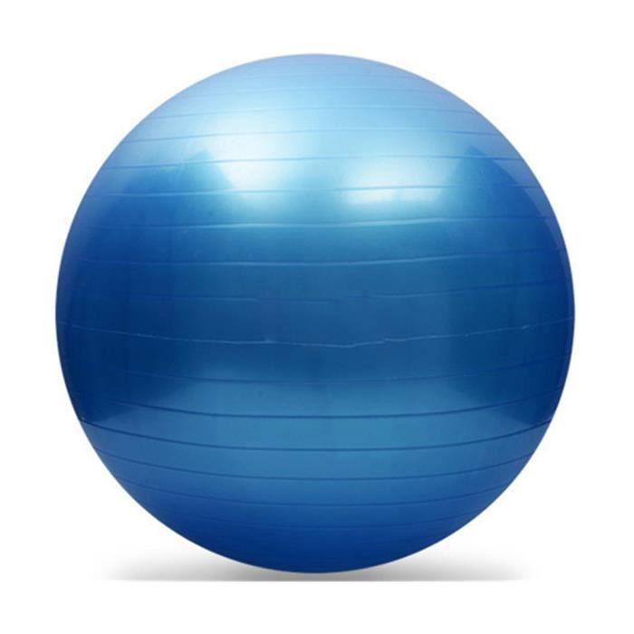 Yoga Fitness ballon d'exercice Équilibre Force Gymnastic 55cm + POMPE WR997