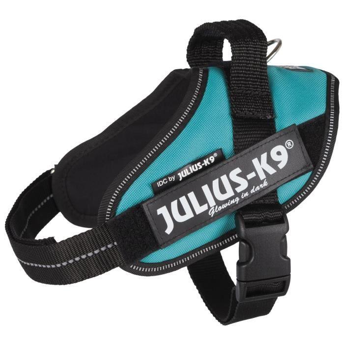 JULIUS-K9 Harnais Power IDC - Mini-Mini - S : 40-53 cm-22 mm - Pétrole - Pour chien