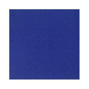 SERVIETTE JETABLE Serviette ouate bleue 2 plis 30 x 30 cm (3200 unit