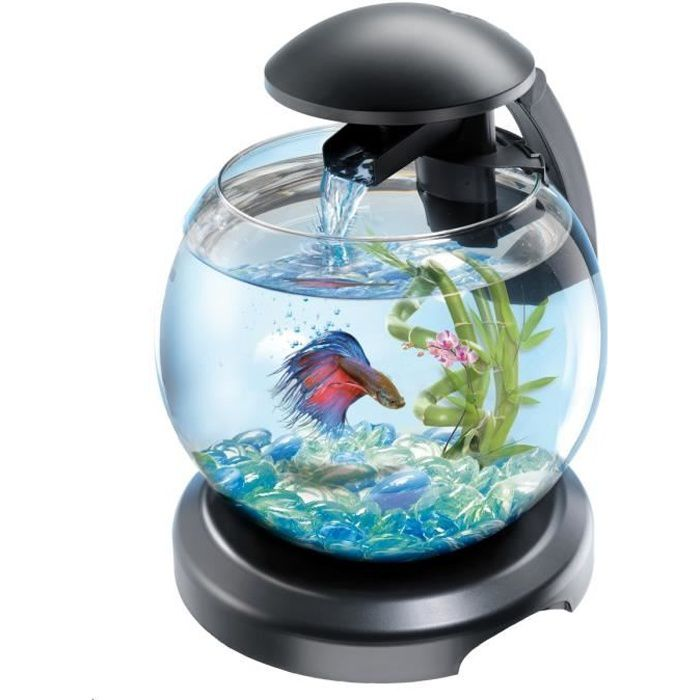 aquarium rond