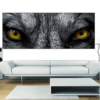 Stickers panoramique d co yeux de loup r f 3627 13 for Decoration murale loup