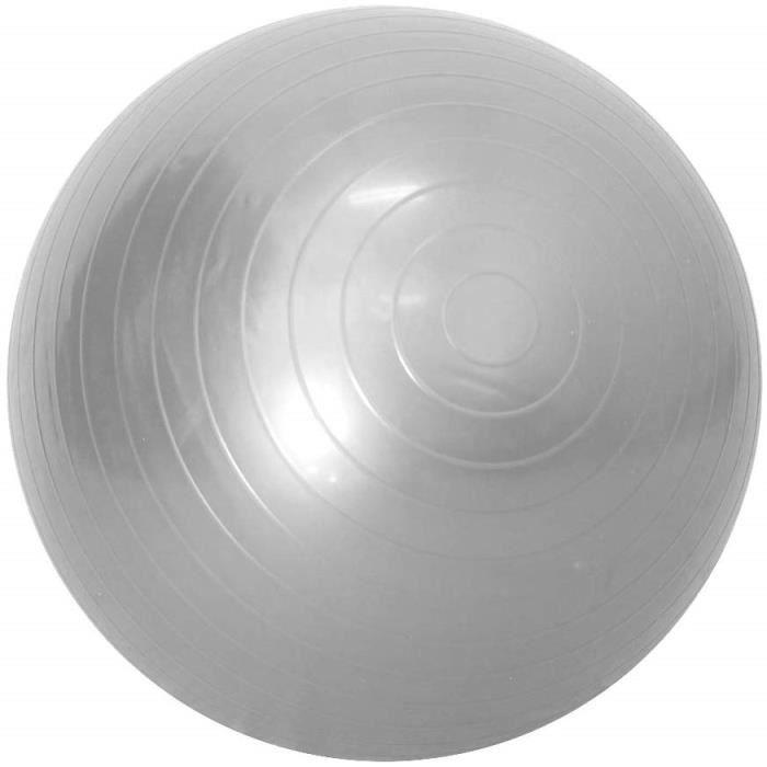SHLK Ballon de Yoga Ballon d'exercice Professionnel Ball Balance pour Pilates Yoga Stability Gym Entraînement àDomicile 45cm gris
