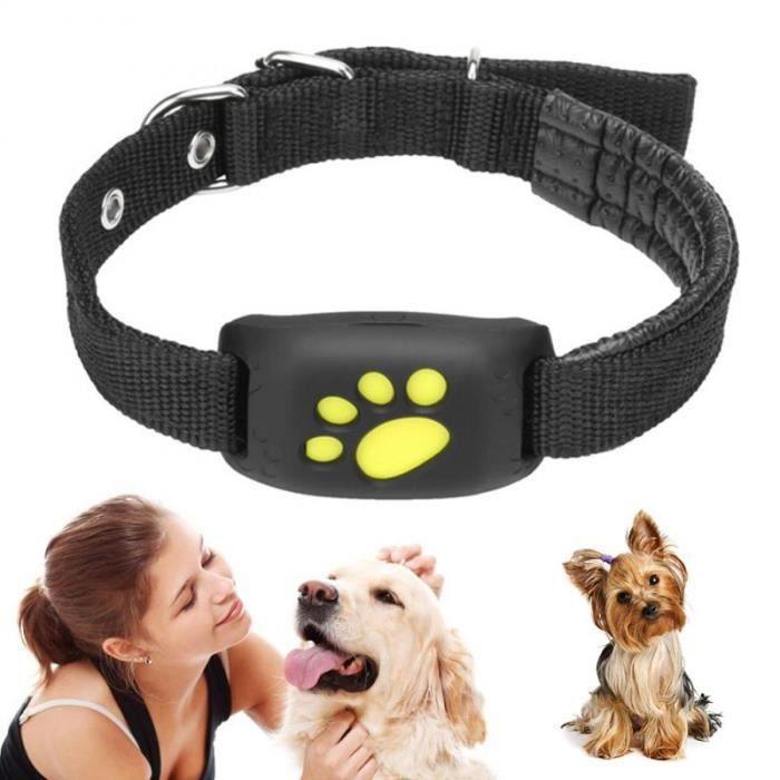 Collier de suivi GPS pour chien et chat Fonction de rappel GPS étanche Tracker GPS