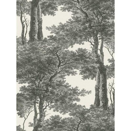 Passepartout Arbres Fond D Ecran Noir Et Blanc Rasch 605419 Achat Vente Papier Peint Maison Et Jardin Decor Cdiscount