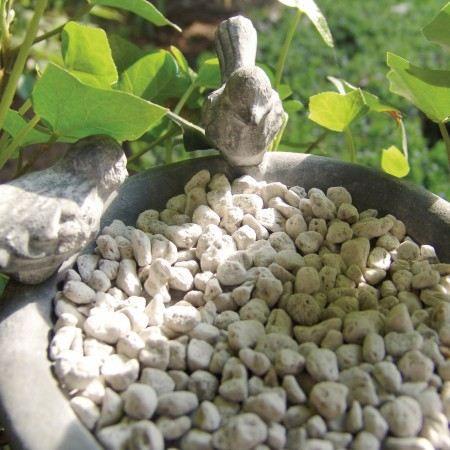 Soucoupe pour pot avec oiseaux gris