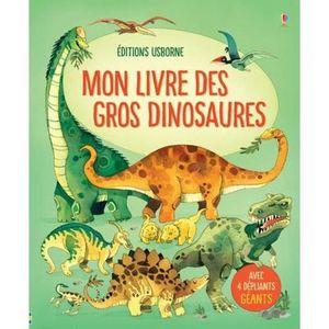 DOCUMENTAIRE ENFANT Livre - mon livre des gros dinosaures