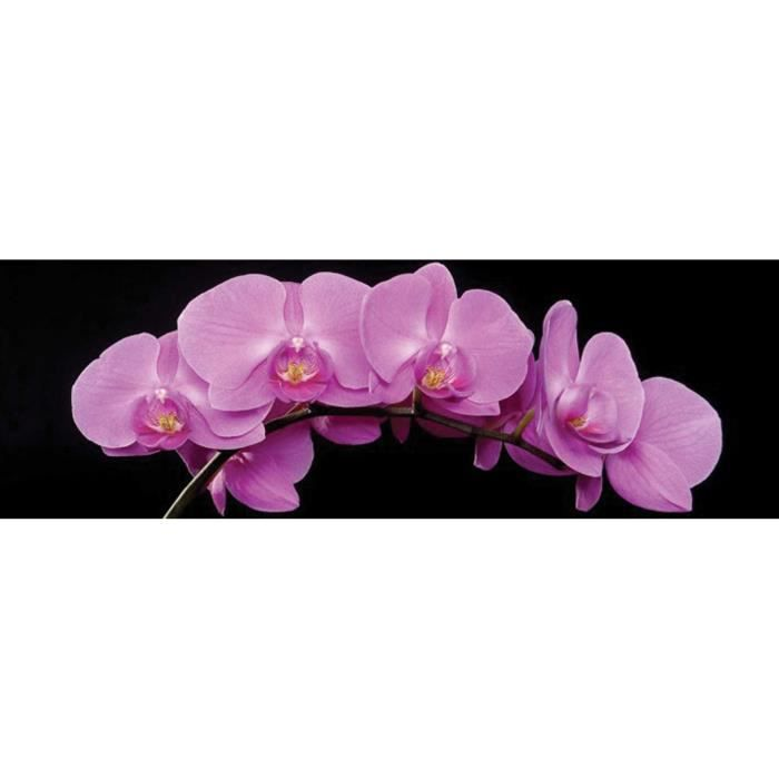 Orchidee rose tableau d co glass art 40x120cm cdt achat for Tableau en verre imprime