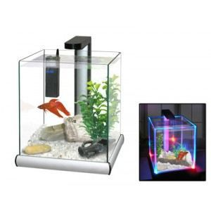 aquarium nu pas cher petit aquarium design pas cher 28 images aquarium. Black Bedroom Furniture Sets. Home Design Ideas