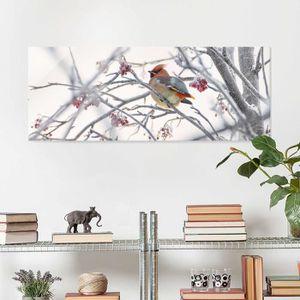CADRE PHOTO 40x100 cm verre image - jaseur dans l'arbre - impr