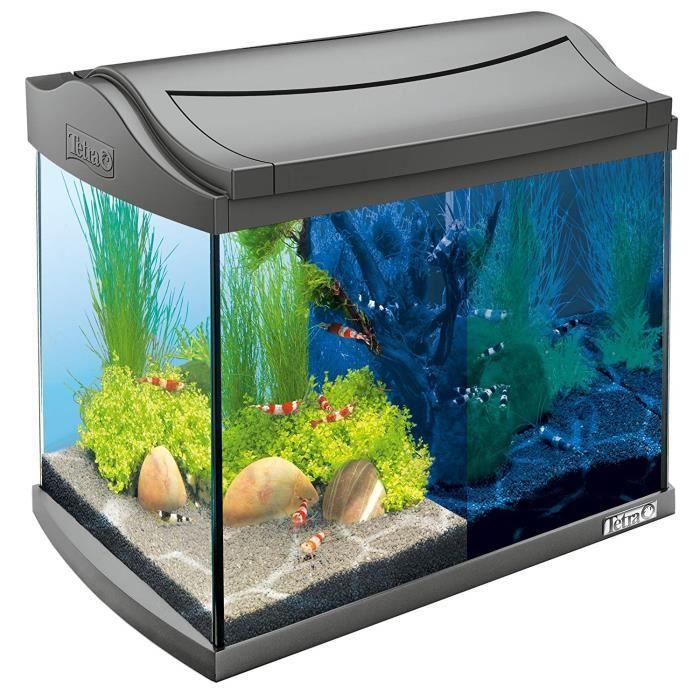 Tetra AquaArt Discovery Line Aquarium en kit complet avec LED 20 L anthracite (avec éclairage LED, Circuit de lumière de jour et