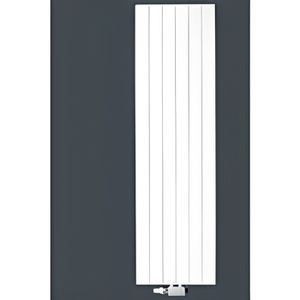 radiateur acier vertical finimetal reganne 3000 achat. Black Bedroom Furniture Sets. Home Design Ideas