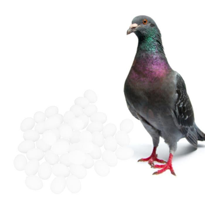 YOSOO Oeufs à couver 50 PCS En Plastique Durable Usage Spécial Simulation Réaliste Faux Oiseau Pigeon Nid Éclosion Oeufs