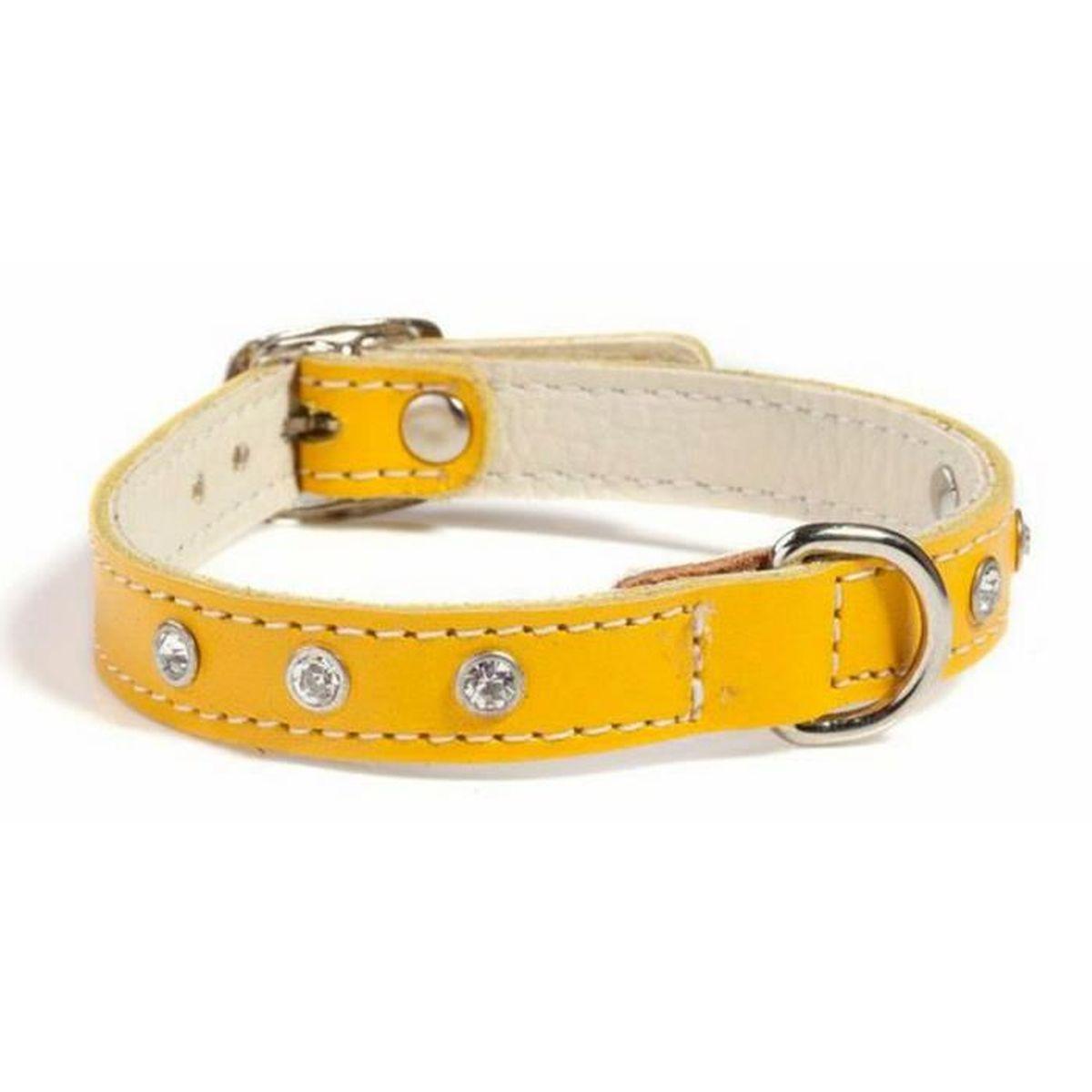 collier chien cuir 35 cm
