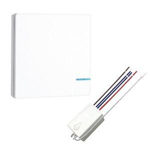 COURANT PORTEUR - CPL Interrupteur sans fil avec kit récepteur Télécomma